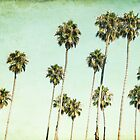 Palm Trees by Mareike Böhmer