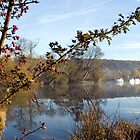 Thames and Chilterns Pangourne by Jim Hellier