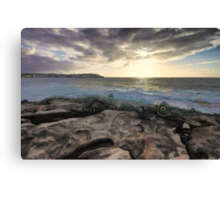 Crocodile Rock Canvas Print