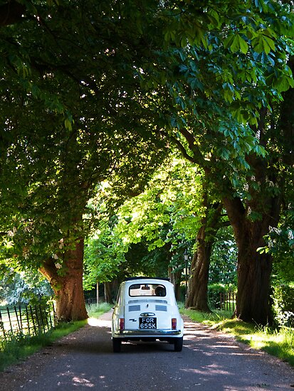 Cinquecento Fiat 500 by Flo Smith