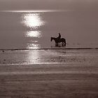 Horse at sunrise by Flo Smith