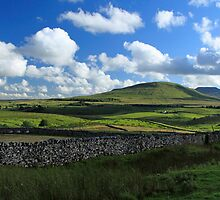 Ingleborough by SteveFinch