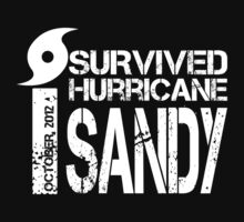 I SURVIVED HURRICANE SANDY by mcdba
