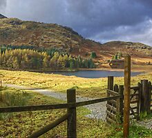 Gateway To Blea Tarn by Jamie  Green