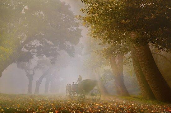 Autumn Carriage