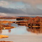 Loch Ba Panorama by Rachel Slater