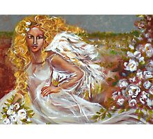 FIELD OF ANGELS Photographic Print