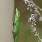 Green lizard with floweres by JeffeeArt4u