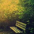 park bench by NiaTakesPhotos