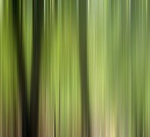 Abstract Trees in the Forest by Natalie Kinnear