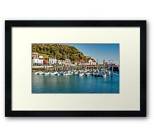 The Marina Framed Print
