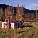 Derelict House, Hops Field, Tasmania by Brett Rogers