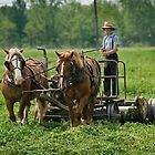 Amish Boy by wolftinz