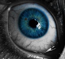 Blue Eyeball by pjwuebker