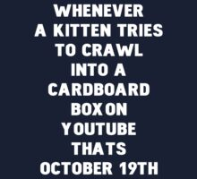 October 19th... Kittens by ashedgreg