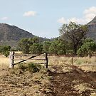 Well Used Gate Leading to The Peaks by Saraswati-she