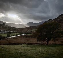 Ray of Light by David Rothwell
