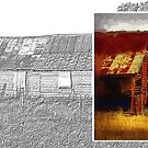 Old cottage diptych 1 by Fran Woods
