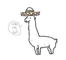 I Like My Hat by baroquebordello