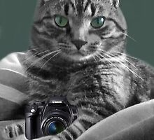 <º))))><  IV GOT THE CAMERA~ I GOT THE POSE~ TAKE MY  PICTURE ~YOU'LL REMEMBER THE MOST <º))))><  by ╰⊰✿ℒᵒᶹᵉ Bonita✿⊱╮ Lalonde✿⊱╮