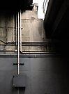 network by Steve Leadbeater