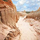 Mungo National Park by susantrigg