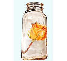 Jar and Flower Photographic Print