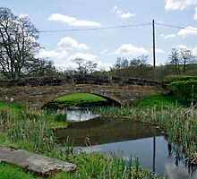 St Mary's Bridge - (east), Thorpe  by Rod Johnson