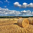 124 Bales Of Hay, Cheshire  by George Standen
