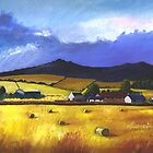 Aberdeenshire Landscapes by ALICE STUART