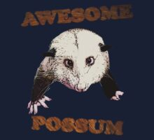 Awesome Possum by cooljules