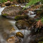 Mountain Creek  by Mark  Lucey