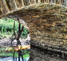 Under Hughes Creek Bridge by Leigh Monk