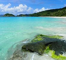 Trunk Bay St. John by Gary & Marylee Pope