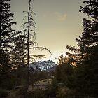 Rockies at Dusk by RainaRaina