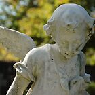 Lost Angel by Thomas Stevens