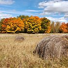 Three Hay Bales by April Koehler
