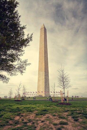 Monumental - Washington D.C, USA by Sean Farrow