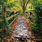 The Wooden Bridge by Ellesscee