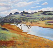 The Dam at Rawnsley Park!, Flinders Ranges. South Australia. by Rita Blom