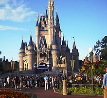 Walt Disney World- Castle by Flippinawesome