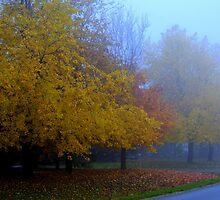 A Study in Fog............ Again..... by Larry Llewellyn