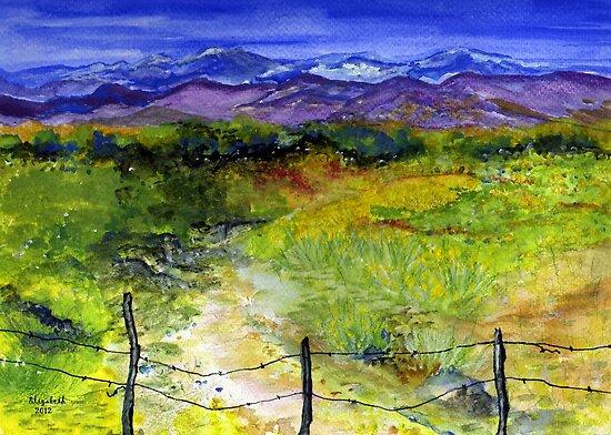 Colours by Elizabeth Kendall