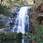 Waterfall Along The Great Ocean Road VIC by Madelaine Bleckly