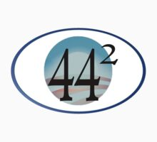 44th president, second term. 44 Squared by Weber Consulting