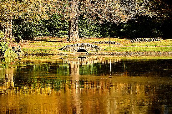An autumn bridge by Martina Fagan