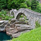 The old stone bridge in Valle Verzasca by Michael Brewer