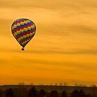 Hot Air Balloon Golden Sky by Bo Insogna