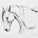 Simple Horse Charcoal Drawing by Felicity Deverell