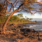 Hawaiian shores by Bryan  Keil